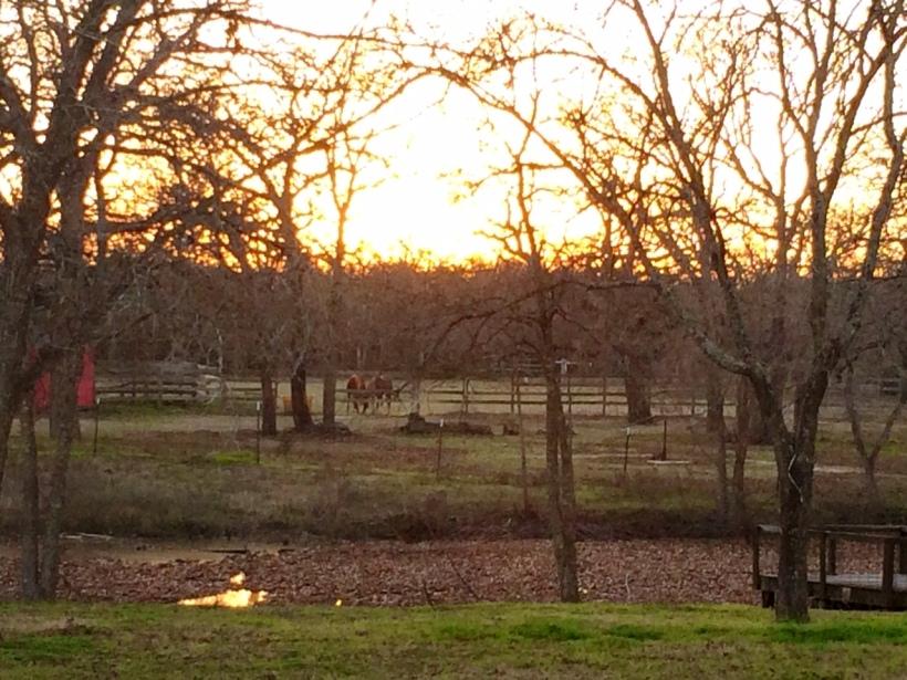 sunset at turkey creek